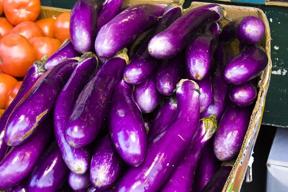 Eggplant (100+ Seeds)