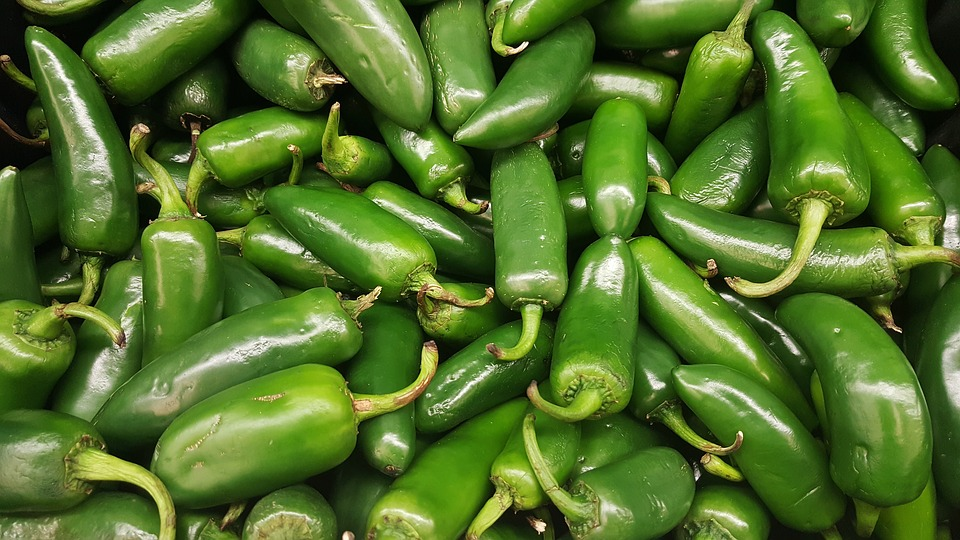 Jalapeno Pepper (100+ seeds)